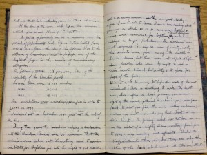 Image of Dr. McNeill's Diary